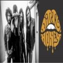 Group logo of Dirty Honey_Fan