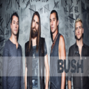 Group logo of Bush_Fan